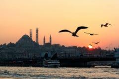 Заход солнца в Стамбуле Стоковая Фотография RF