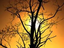 Заход солнца в Хорватии стоковые изображения rf
