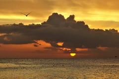 Заход солнца в Caribbean стоковые изображения