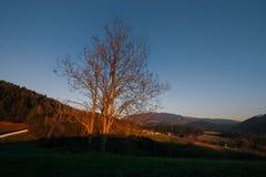 Заход солнца в styrian холмах стоковое изображение