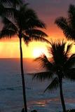 заход солнца Гавайских островов oahu тропический стоковые изображения