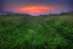 заход солнца глаза Стоковые Фото