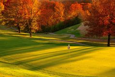 заход солнца гольфа курса Стоковые Изображения