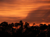 заход солнца горизонта Стоковое Изображение