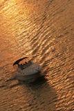 заход солнца гребли Стоковые Фотографии RF
