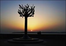 заход солнца Джерси Стоковые Фотографии RF