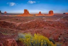 Заход солнца долины памятника с желтым заводом Стоковые Изображения RF