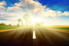 заход солнца дороги лужка асфальта зеленый Стоковые Фото