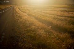 заход солнца дороги Стоковая Фотография