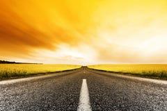 заход солнца дороги canola Стоковые Фото
