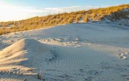 Заход солнца дюн острова Гаттераса стоковое изображение rf