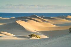 заход солнца дюн Стоковые Изображения RF