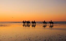 заход солнца езды Стоковое Изображение