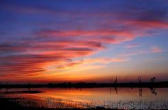 заход солнца зарева Стоковое Изображение RF