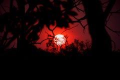 Заход солнца захолустья Стоковое Фото