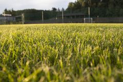 Заход солнца зеленой травы цели футбольного поля внешний Стоковое Изображение