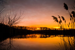 Заход солнца зимы на озере Стоковое Изображение RF