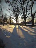 Заход солнца зимы стоковые изображения rf