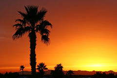 заход солнца зюйдвеста Стоковые Фотографии RF