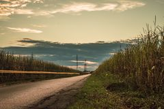 Заход солнца изолировал дорогу в середине поля в brianza Монцы стоковые фото