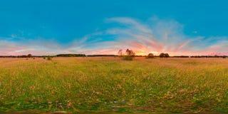 Заход солнца или восход солнца в зеленом поле с голубым небом с розовым цветом сферически панорама 3D с углом наблюдения 360 Подг Стоковое фото RF