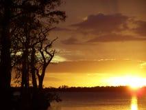 заход солнца кипариса Стоковые Изображения RF