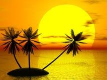 заход солнца красного цвета ладони Стоковые Фотографии RF