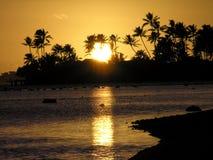заход солнца ладоней океана Гавайских островов Стоковое Изображение