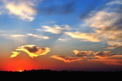 Заход солнца лета над полем Стоковые Фото