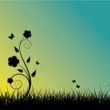 заход солнца лета предпосылки Стоковые Изображения RF