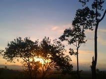 Заход солнца лета, солнце среди деревьев стоковые фотографии rf