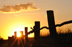 заход солнца лета Стоковая Фотография