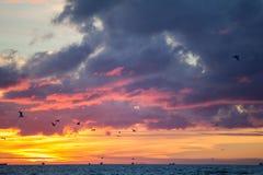 Заход солнца лета Стоковое фото RF