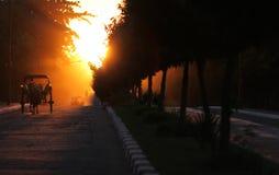 заход солнца лошади экипажа Стоковые Изображения