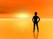 заход солнца мальчика Стоковое Изображение RF