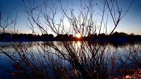Заход солнца между ветвями стоковая фотография rf
