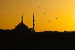 заход солнца мечети стоковое фото rf