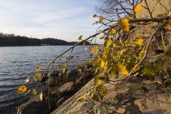 заход солнца моря вечера осени прибалтийский стоковое изображение