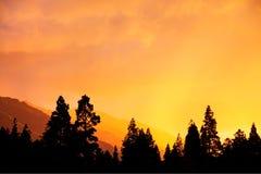 заход солнца моря тумана Стоковое Изображение