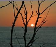 заход солнца моря tyrrenian Стоковое Изображение