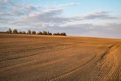 Заход солнца над аграрным полем стоковые фотографии rf