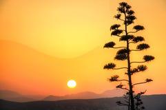 Заход солнца над Афинами в Греции Стоковое Изображение RF