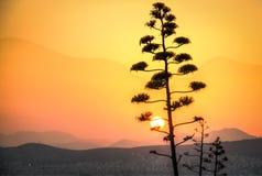 Заход солнца над Афинами в Греции Стоковые Фотографии RF