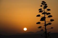 Заход солнца над Афинами в Греции Стоковое Изображение