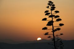 Заход солнца над Афинами в Греции Стоковое Фото