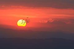 Заход солнца над горами красивое время Стоковые Фотографии RF