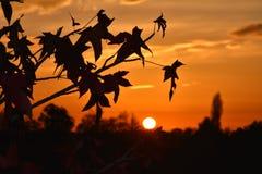 Заход солнца над долиной Po стоковое изображение