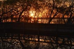 Заход солнца над дорожкой на парке штата холма кедра в Техасе стоковые фото