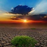 Заход солнца над неурожайной землей Стоковые Изображения