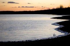 Заход солнца над озером в зиме стоковое фото rf